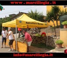 marciliegia 2015