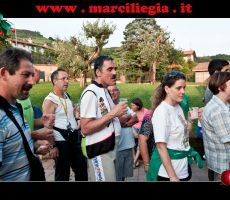 marciliegia 2014